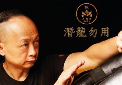 莫鵬濟詠春拳術學會