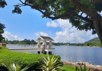 本地旅遊逍遙樂之迪欣湖、青馬丁九觀景台、東涌炮台、機場富豪自助午餐1 日遊