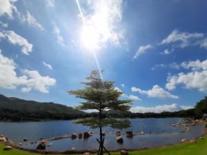 迪欣湖12